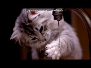«Поделитесь интересными фотографиями животных» под музыку Рокси винкс - Ето невножко грустная песня про то что Рокси умерла....