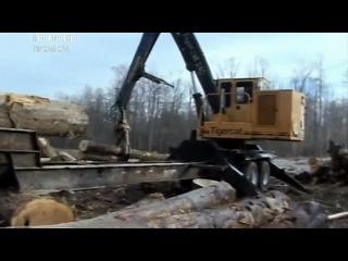 Лесоповал на болотах (10 серия)