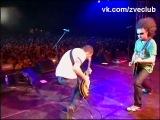 ЗВЕРИ - 05. Брюнетки и Блондинки (Новая Волна 2008, рок-дискотека)
