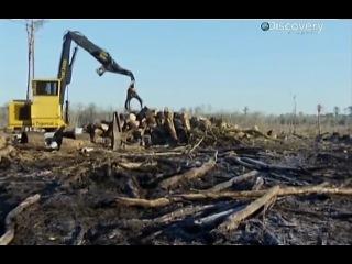 Лесоповал на болотах (9 серия)