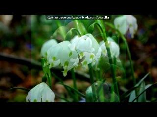«Поздравление с наступающим Днём Весны 8 Марта» под музыку Группы Фристайл - Ах, какая женщина !!!