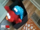 cookie monster humping elmo..