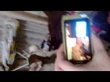 Видео на видео о том, как Ярик Кобальту подражает)))))