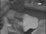 Водонаева и степан видео секс нашел