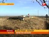 Сотни собак под Одессой отравили газом? [неизвестные живодеры]
