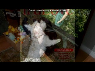 «*** Фотогерой - мои фотоэффекты! ***» под музыку Nikkfurie - The A La Menthe ( с фильма 12 друзей Оушена ). Picrolla