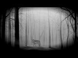 Ryan Davis - The Wolve (Joff Logartz In The Bergerie Remix)
