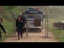 Полицейская Академия 1. Перевод Л.Володарского