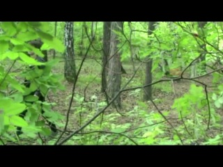 Adam Lambert - What R U want from me (Dutov cover) » Freewka.com - Смотреть онлайн в хорощем качестве