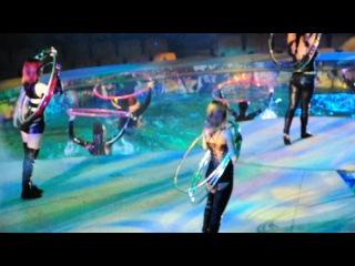 Выступление в Ижевском  Цирке