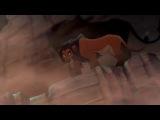 Король лев 3D ограниченный показ в киноцентре