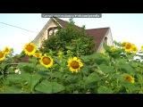 Лето 2010, наш залив под музыку Макин Олег - Осень. Picrolla