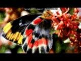 «болажон» под музыку Ummon뀁 - Уммон - Unut beni [WwW.UZBNEWS.RU]- Унут бени (узбекская). Picrolla