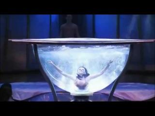 Cirque du Soleil Zumanity Waterbowl