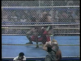Wrestling News WCW WrestleWar 1992 Sting Barry Windham Dustin Rhodes Ricky Steamboat and Nikita Koloff vs Steve Austin Rick Rude Arn Anderson Bobby Eaton and Larry Zbyszko WarGames match
