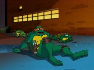 Черепашки мутанты ниндзя/Teenage Mutant Ninja Turtles 10 серия Сезон №7 (2008-2009)