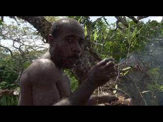BBC Планета людей Джунгли Обитатели деревьев 4 серия из 8