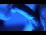 Black Spark Art, Film, Photo, Video, Creative09