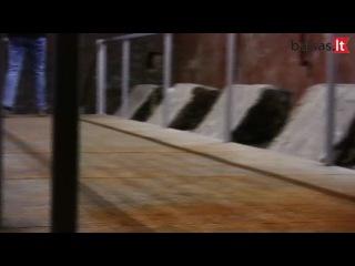 Požeminis tunelis sovietinėje karinėje bazėje legendų įminimo beieškant I