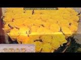 Фотогерой - мои фотоэффекты! под музыку Discokontakt 9 - Dom Omar - Мы едим в лето (Dj Electro$hock mash-up) ( Russian ). Picrolla