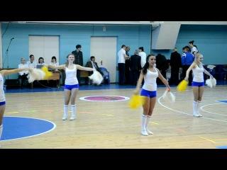 Группа поддержки ЖБК Динамо Курск NBA