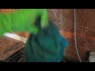 Забияка зеленый борщ