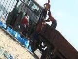 Выброс бычка 2. Урзуф,июль 2012