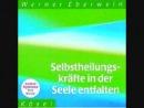 Werner Eberwein - Selbstheilungskräfte