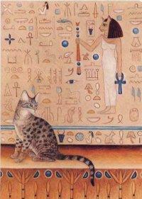 Кошка Бастет, 11 сентября 1988, Санкт-Петербург, id86586874