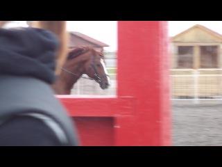 Аделя и Дуэлянт 2)  (Видео Саши Зотиной)