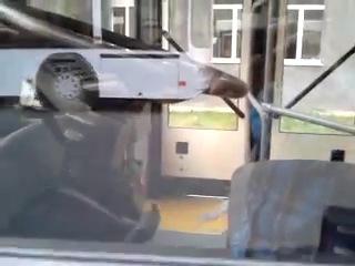 Новые мАз-ы ВПТ.