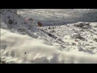 Адские трассы / Hell roads Discovery (2012)