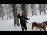 (Кавказский Переулок) Мага и его Лев