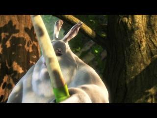 Большой кролик Бак  ,jkmijq rhjkbr ,fr