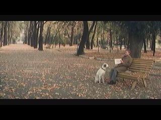 Белый Бим Черное Ухо (1976) Отрывок из Фильма