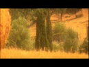 Andre Rieu - The Godfather Main Title Theme