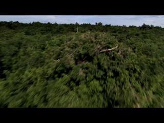 Древние пришельцы (3 сезон) - Пришельцы и создание человека (16 серия)