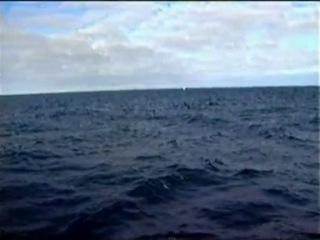 Самая большая атомная подводная лодка в мире Русская Акула