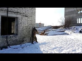 94\3. Тактическая солянка на Ильиче. (02,02,2014)