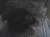 video-2013-05-09-13-36-56
