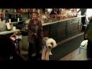 Телекинез / Carrie.Вирусный ролик 2013 HD