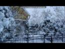 """«Мороз и солнце -день чудесный!» под музыку Трио """"Зажигай!"""" - Зима-красавица. Picrolla"""