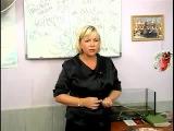 Видео для тех, кто хотел бы открыть свой бизнес без капиталовложений