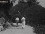 1966 Незнакомец внутри женщины / Onna no naka ni iru tanin (субтитры)