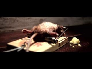 BigFoot silva_mouse