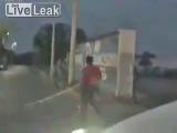 Обезьяна прыгала по силовым электрическим кабелям на улице пока её не ударило током