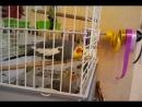 Video-2012-07-08-13-05-55_04