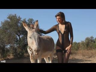 Maria ryabushkina - donkey