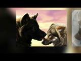 Фотографии на моей стене - Артем СтыровПлачет душа одинокого волка. Слайдшоу vertaSlide