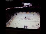 дождь из плюшевых мишек на хокее(vine)